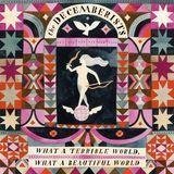 What a Terrible World, What a Beautiful World [Bonus Tracks] [LP] - Vinyl