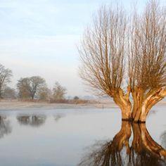 Elbe Riverside UNESCO Biosphere Reserve – a voyage of discovery ©Jan Schormann / LUGV