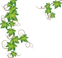 ivy vine tattoo designs | Ivy image - vector clip art online, royalty free & public domain