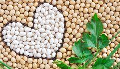 Glutenfri - en lynguide til glutenfri kost | I FORM