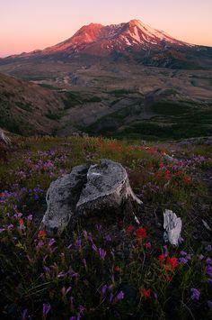 Mt St. Helens, Washington