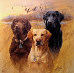 hunting dogs   The Universe Story -- 'The Human and the Ecozoic Era'