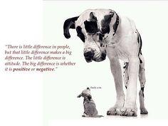 #funny #attitude ✌️