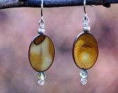 golden shell and Swarovski crystal earrings with sterling silver wire.