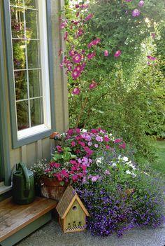 Country Garden Photo - Lonny