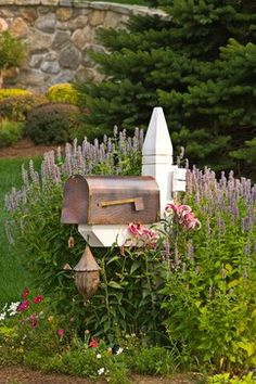 Pretty mailbox design and landscaping - copper mailbox surrounded by Giant Hyssop and lillies