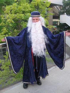 Dumbledore Wig 68