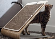 Cool Furniture For Your Pet ~ Home Designs