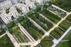 Parc André Citroën, 15th arrondissement, Paris, France (landscape designers Gilles Clément and Alain Provost, and the architects Patrick Berger, Jean-François Jodry and Jean-Paul Viguier) - Serial Gardens