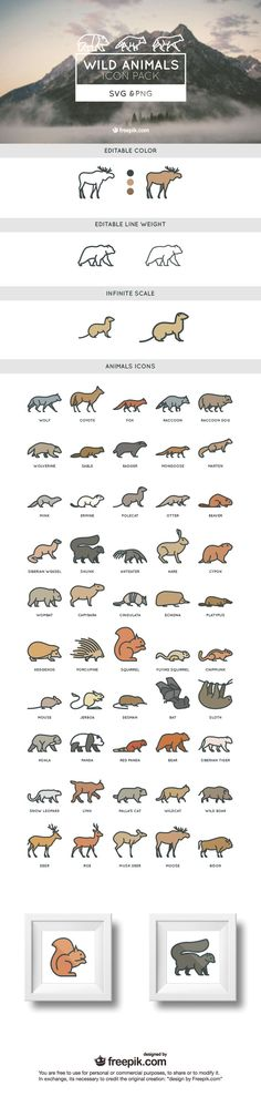 50 wild free animals SVG and PNG icon set: