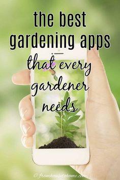 Vegetable Garden For Beginners, Gardening For Beginners, Gardening Tips, Shade Plants, Cool Plants, Planning App, Identify Plant, Covered Garden, Garden Planner