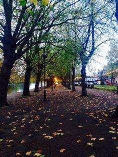 Bedford, England.