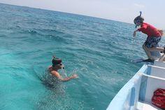 A families snorkel adventure off IZE SWC Lodge