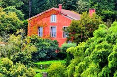 Portugal's Best Wine Hotels Nelson_Carvalheiro (1)