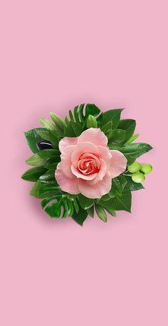 Love Failure Quotes, Flower Designs, Tips, Iphone Wallpaper, Pineapple, Stud Earrings, Fruit, Flowers, Plants