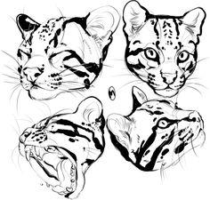 Marvelous Drawing Animals In The Zoo Ideas. Inconceivable Drawing Animals In The Zoo Ideas. Animal Sketches, Animal Drawings, Art Sketches, Big Cats Art, Cat Art, Desenho Tattoo, Cat Drawing, Art Tutorials, Art Reference
