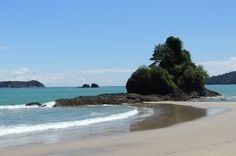 manuel antiono national park attraction turtle point   - Costa Rica