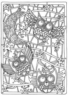 Owls coloring page for adults