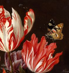 Still Life Of Variegated Tulips In A Ceramic Vase With A Wasp A Dragongly A Butterfly And A Lizard. Vivid 1625 still-life by Dutch Golden Age painter Balthasar van der Ast, circa DETAIL. Dutch Still Life, Still Life Art, Dutch Golden Age, Vase Shapes, Motif Floral, Vanitas, Vases Decor, Botanical Art, Oeuvre D'art