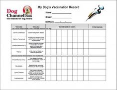 1000 images about kennel ideas on pinterest dog kennels for Pet health record template