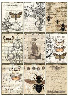 Sheet vlinders en vliegen | ~Dieren | Nostalgie & Brocante: