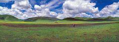 Photographies - Paysages - Matthieu Ricard - Photo - Landscape - Picture - Nature - Natural - Green - Vert