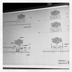 """Deep garden"" section by A12. #ClusterInternationalWorkshop #Expo2015 #ExpoMilano2015 #Expo2015Cluster #AnnaBarbara"