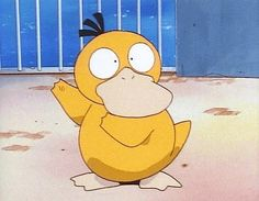 honestly, psyduck was the cutest thing in the anime