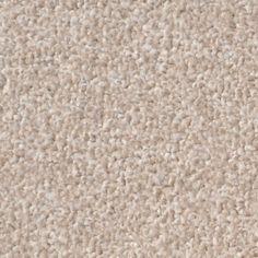 Saxony Cream Carpet - eCarpets save £££s on Saxony Cream Carpet!