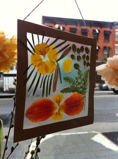 Nature Collage Sun Catcher - Use contact paper and cardstock. Decorate it with stuff found on a nature walk.