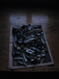 Youliana Manoleva · still life at down · lambda print, dibond