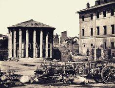 Piazza della Bocca della Verità (1870 ca) Best Cities In Europe, Old Photos, Rome, Buildings, Nostalgia, Places, Instagram Posts, Painting, Cities