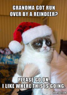 Grandma Got Run Over By A Reindeer Grumpy Cat Funny Grumpy Cat Grumpy Kitty
