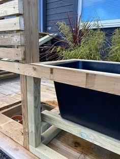 Diy Flower, Flower Pots, Outdoor Chairs, Outdoor Furniture, Outdoor Decor, Diy Sofa, Garden Inspiration, Planting, Gardening