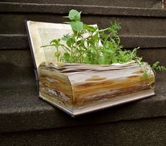 boeken hergebruiken, bijvoorbeeld als plantenbak *