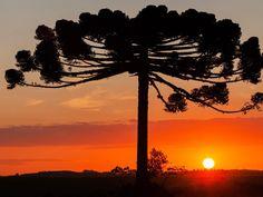 pôr do sol em Ponta Grossa-BR