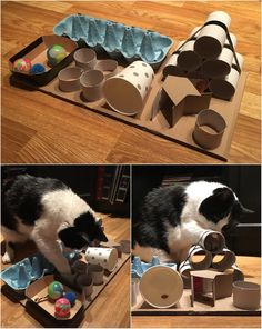 DIY puzzle feeder for cats DIY Puzzle Feeder für Katzen Homemade Cat Toys, Diy Cat Toys, Cats Diy, Toys For Cats, Cool Cat Toys, Dog Enrichment, Dog Furniture, Outdoor Furniture, Cat Playground