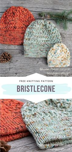 Beanie Knitting Patterns Free, Beanie Pattern Free, Easy Knitting, Knitting Stitches, Bag Patterns To Sew, Sewing Patterns, Knit Or Crochet, Crochet Hats, How To Purl Knit