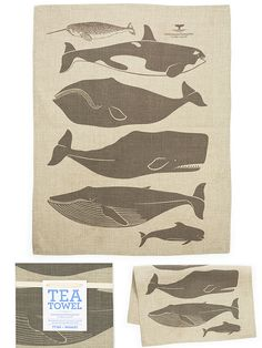"""""""Whales"""" towel made by enormous champion. Would totally matte and  frame it for a baby room...if I had one of those. :)"""