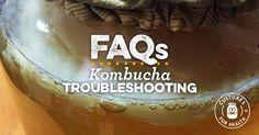 Kombucha Troubleshooting FAQ