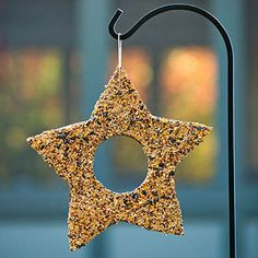 Birdseed Café: This simple nature project lets you give feathered friends a treat during National Bird-Feeding Month (February). From corrugated cardboard, cut a large star with a circle inside. Poke a hole and add a loop of twine for hanging. Spread peanut butter on both sides of the star. Working over a rimmed baking sheet, coat the star with birdseed.