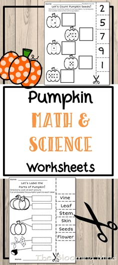 This Print And Go Lets Count Pumpkin Seeds Math Worksheet Will