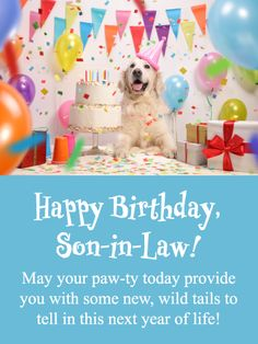 Son Birthday Card men boys CELEBRATE IN STYLE SON to from Chihuahua Dog lovers