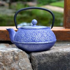 Amazon.com: Primula Cast Iron 40-Ounce Teapot with Stainless Steel Infuser and Loose Green Tea Packet, Blue Floral Design: World Market Teapot: Home & Kitchen