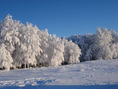 Semenic Mountains - Near Resita