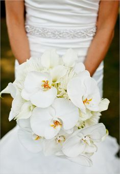 Like this shape of this bouquet for the bridal—we will be using white hydrangeas, peachy pink spray roses, Cherry Brandy roses, mango calla lilies and white phalaenopsis orchids wrapped in ivory ribbon with the stems showing.