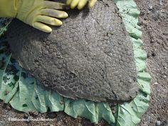 Att gjuta i betong: Fågelbad av rabarberblad