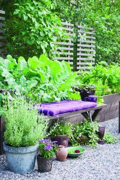 A blogger örömkertje - pihenőpad lila ülőkével