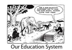 Our education system - Funny cartoon presents our education system: For a fair selection everybody has to take the same exam: Please climb t...