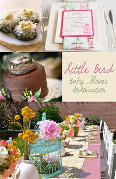 bird baby shower party theme inspiration